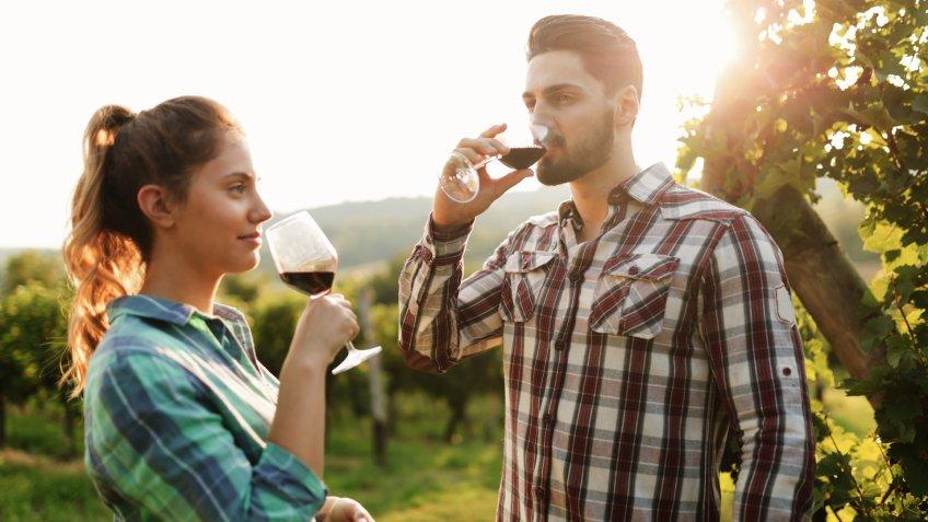 private wine tasting tour