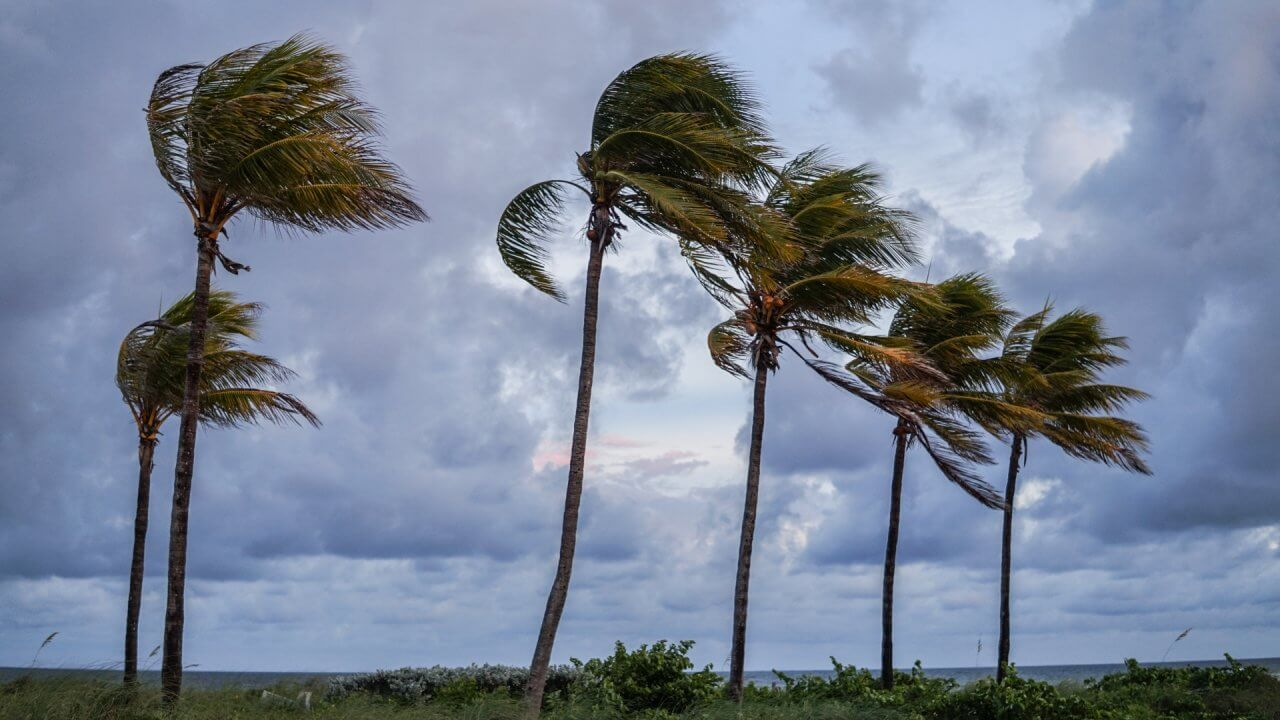 How Climate Change Will Affect Your Investment Opportunities
