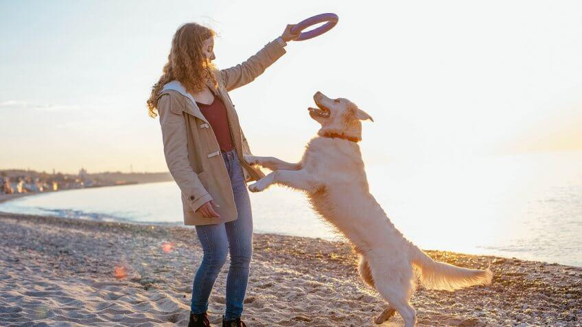 happy woman playing with her dog on the beach