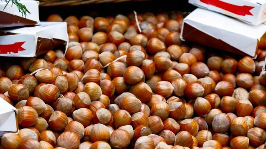 Hazelnuts in England
