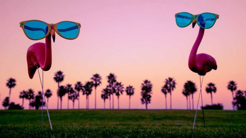 This is a photo of two plastic pink flamingos with sunglasses.