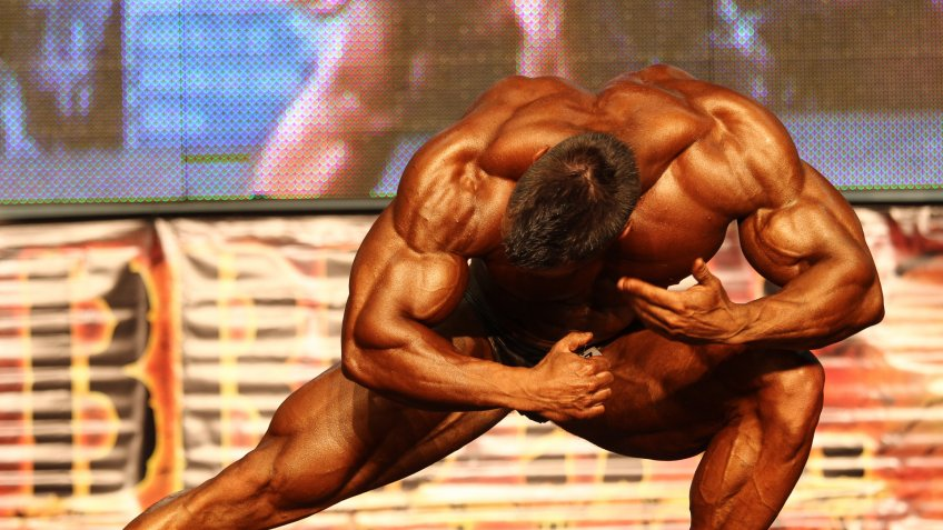 body buildier in Hungary