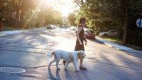 Best Neighborhoods to Retire in Across America