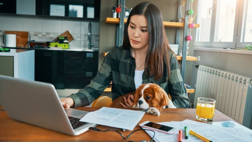 beautiful young woman working from her apartment in the company of her puppy.
