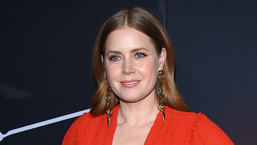"""LOS ANGELES - DEC 11: Amy Adams arrives to """"Vice"""" World Premiere on December 11, 2018 in Hollywood, CA - Image."""