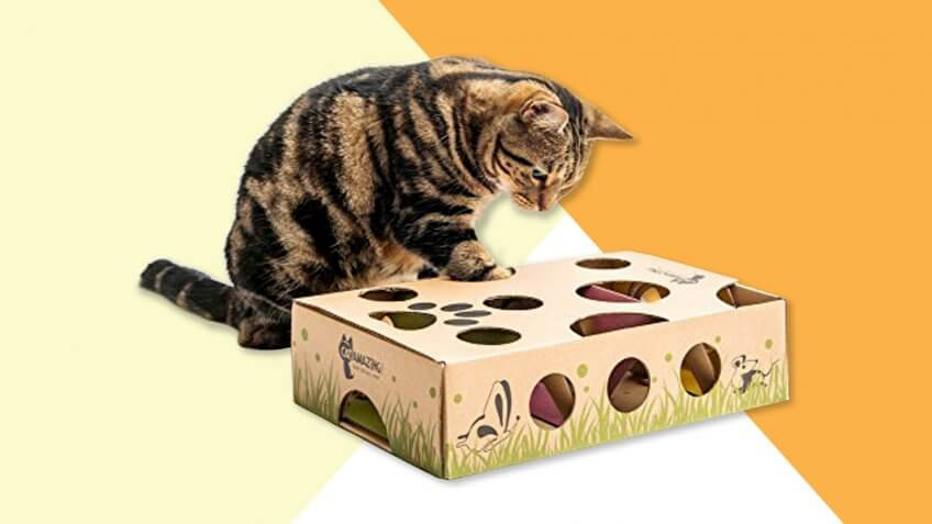 Cat Amazing – Best Cat Toy Ever! Interactive Treat Maze & Puzzle Feeder for Cats.