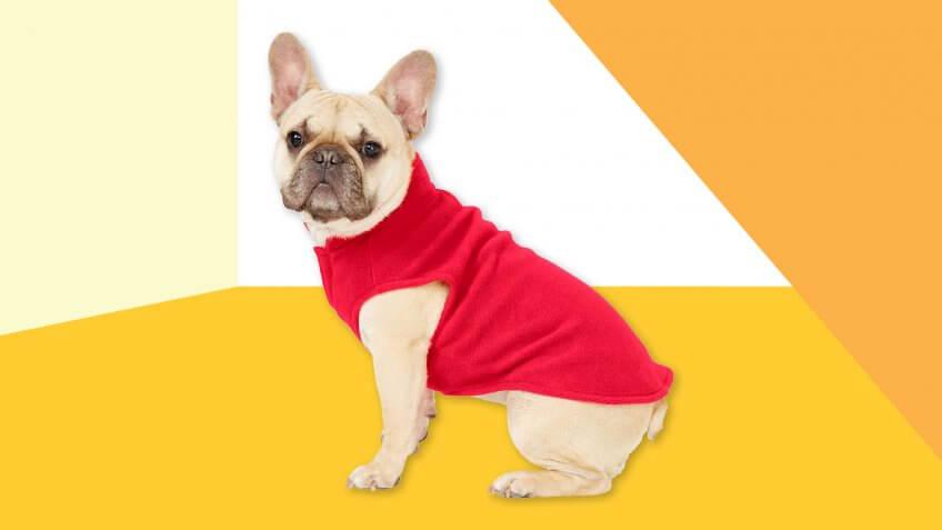 Frisco Dog & Cat Fleece Vest.