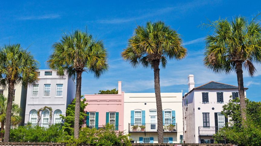 Charleston South Carolina homes with palm trees