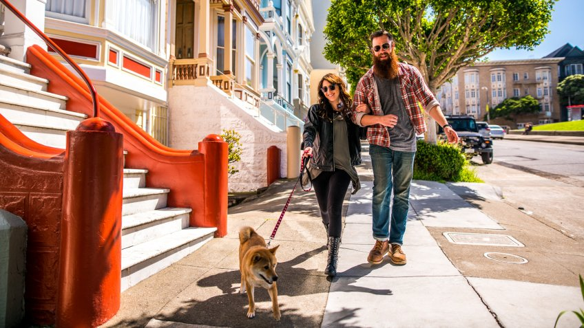 A couple with a dog on a city walk.