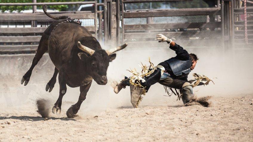 man getting bucked off running bull