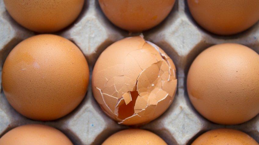 one egg broken in a dozen eggs
