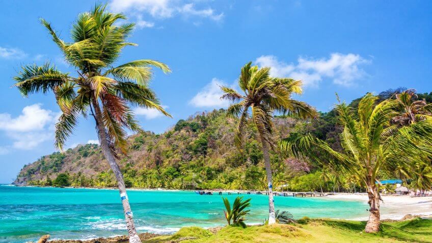 Three palm trees lined up next to the turquoise Caribbean Sea in La Miel, Panama.