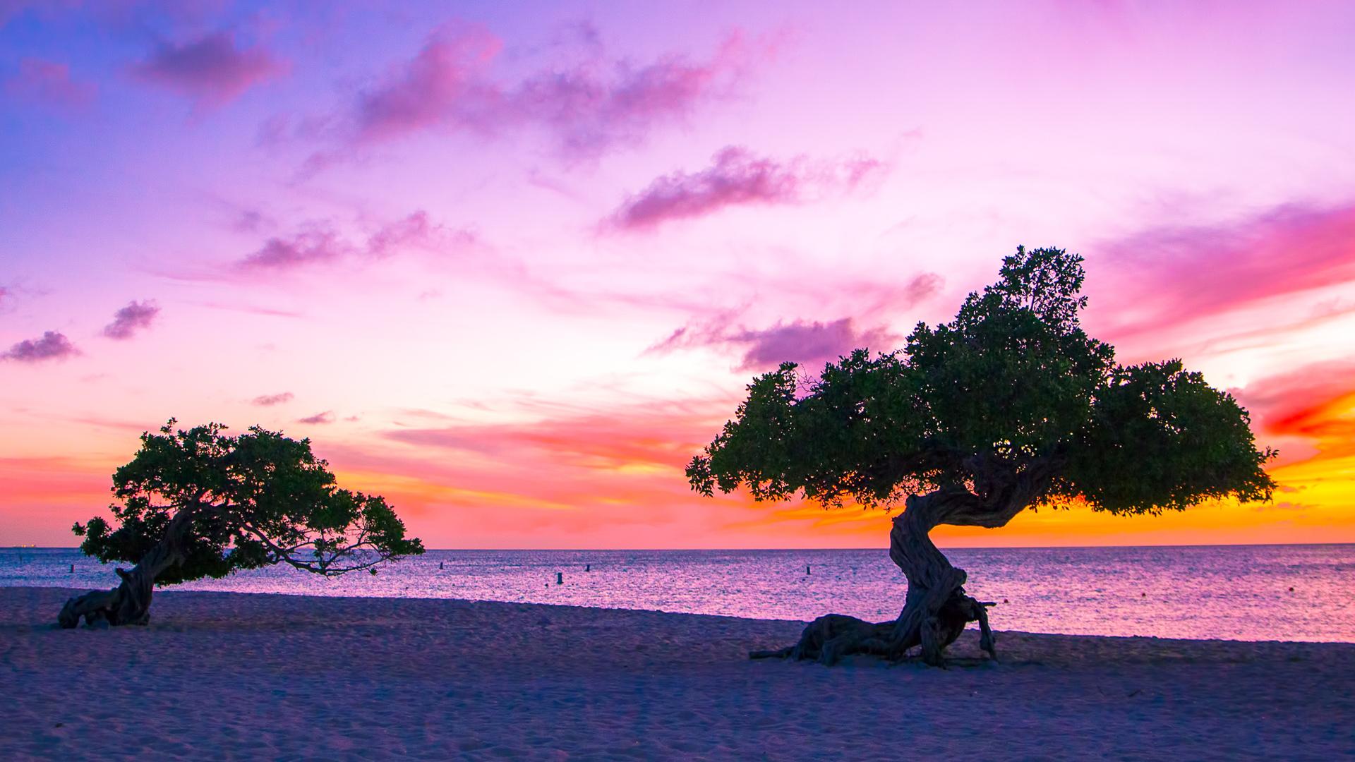 sunset in Aruba on the beach