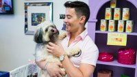 Vanderpump Dogs' John Sessa Shares 3 Tips for Adopting the Perfect Puppy