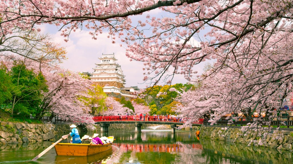 Loans With No Bank Account Or Credit Check >> Japanese Cherry Blossoms: Plan Your Sakura Vacation Now   GOBankingRates