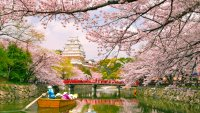 Japan's Iconic Cherry Blossom Season Is Coming Early — Book a Last-Minute Trip for Less