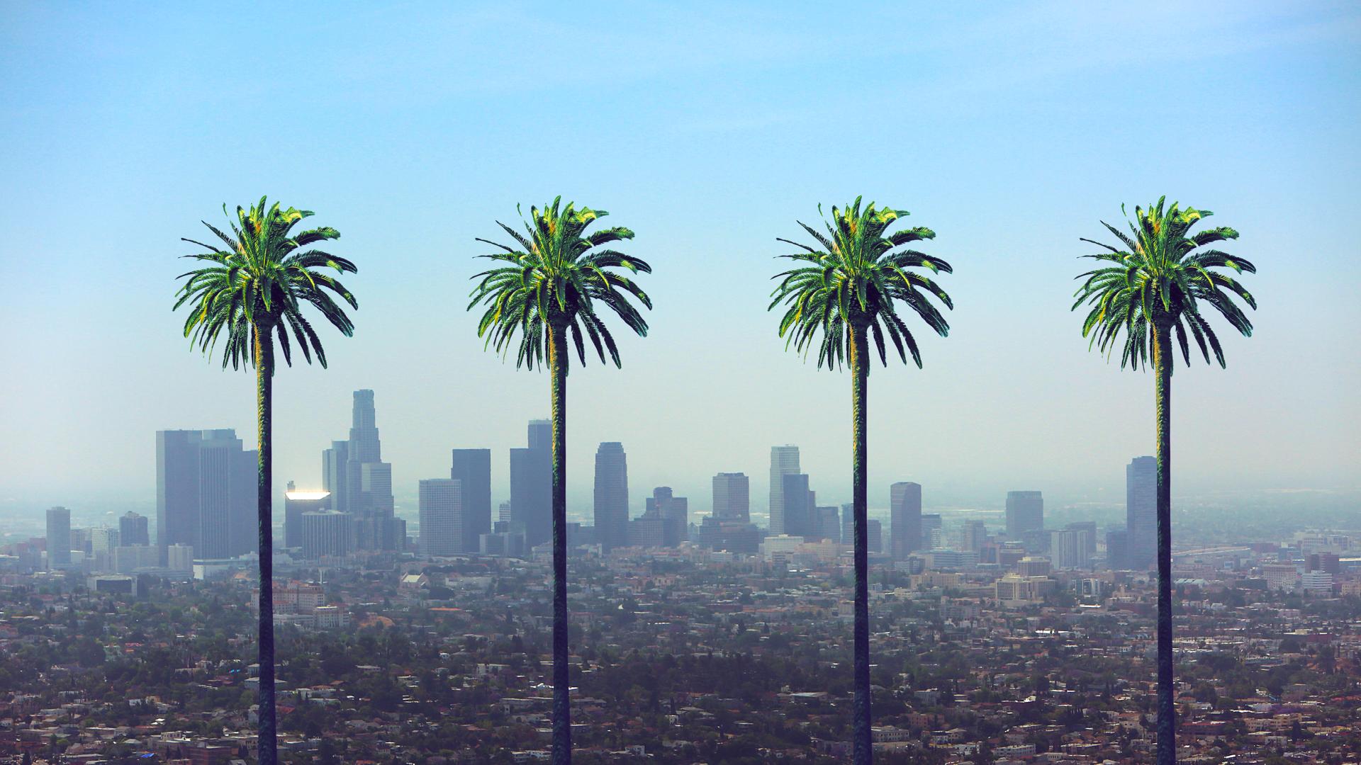 Los Angeles California Skyline Palm Trees