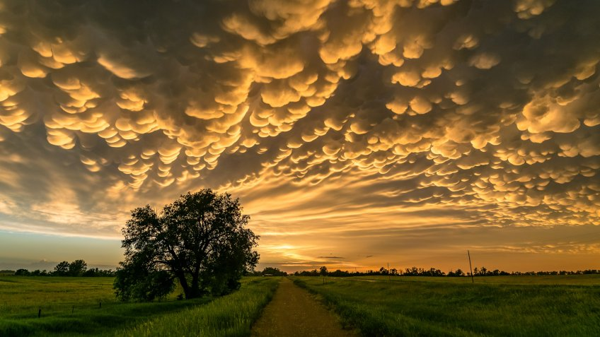 """These clouds (also called mamma), meaning """"mammary cloud"""", is a cellular pattern of pouches hanging underneath the base of a cloud, typically cumulonimbus clouds."""