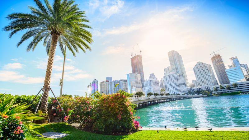 Sunshine Miami.