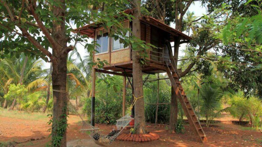 Tropical Treehouse Near Goa, India