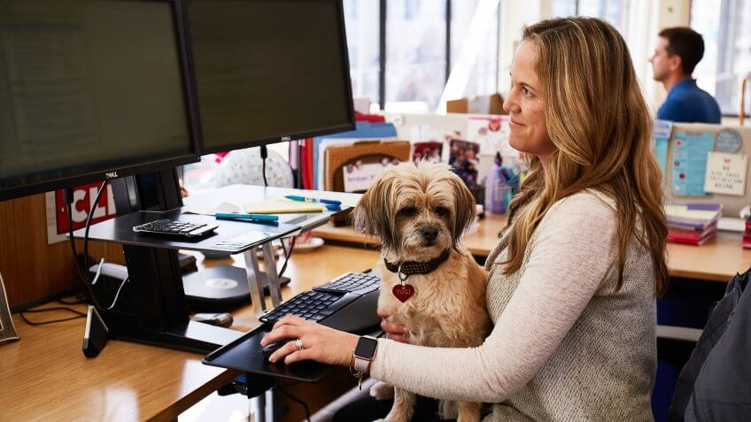 Clif Bar employee with her dog in her lap