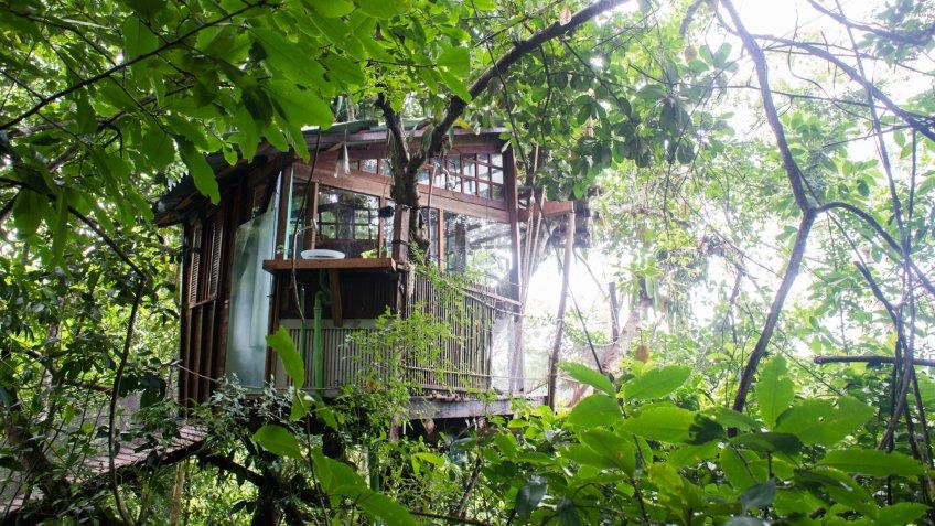 Eco-Friendly Treehouse Near Paraty, Brazil