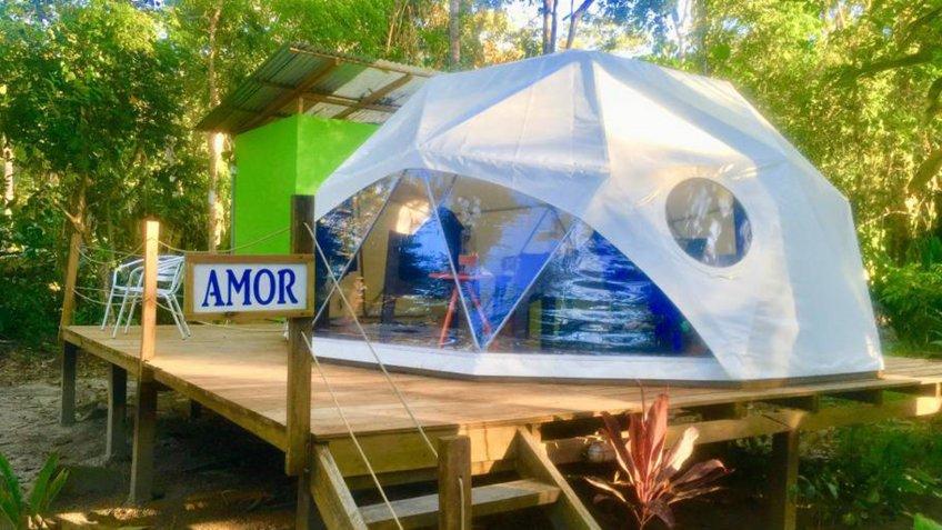 Rainforest Dome Near Manzanillo Limon Costa Rica