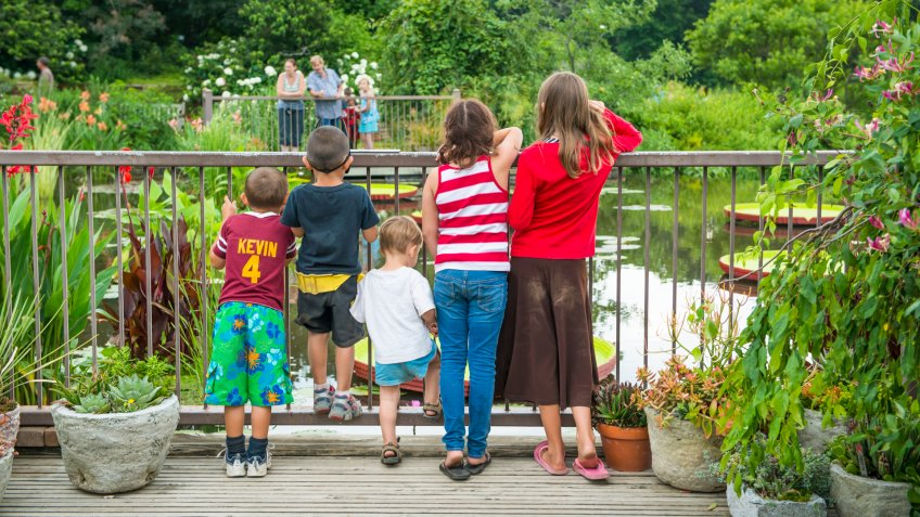 Kingsville, USA- July 3, 2013: Five children looking over and through railing at a pond at Powell Gardens, Missouri.