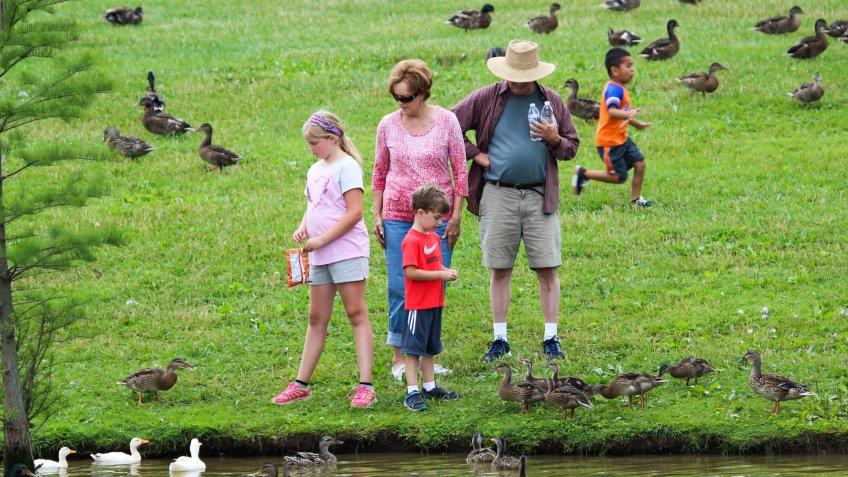Lexington, Kentucky, United States - June 30, 2015:  Family feeding the ducks at Jacobson Park in Lexington, Kentucky.