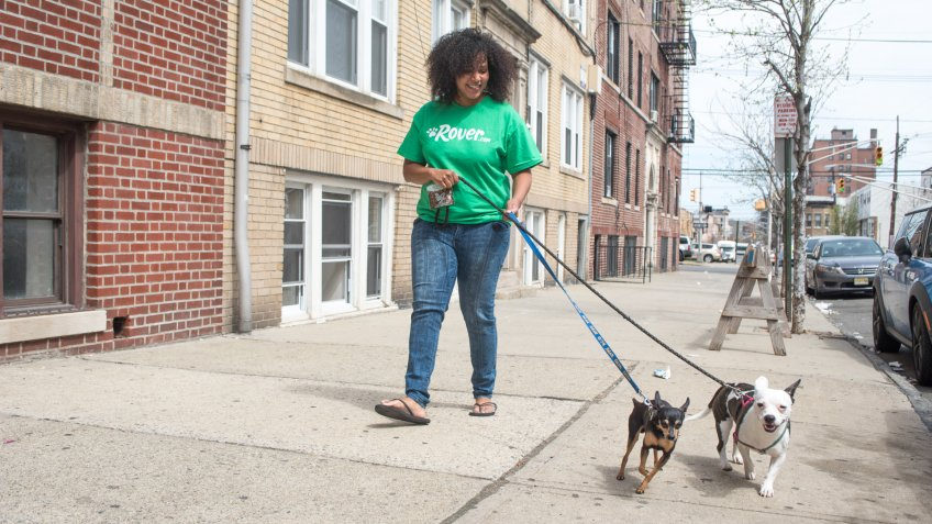 Rover.com dog walking pet startups