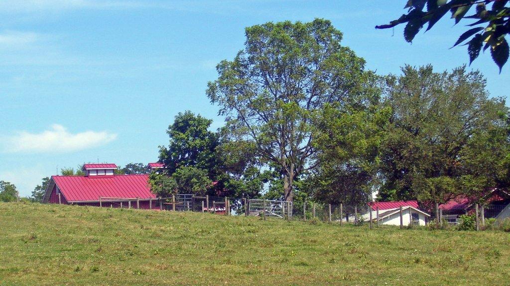 Upper St. Clair Pennsylvania farm