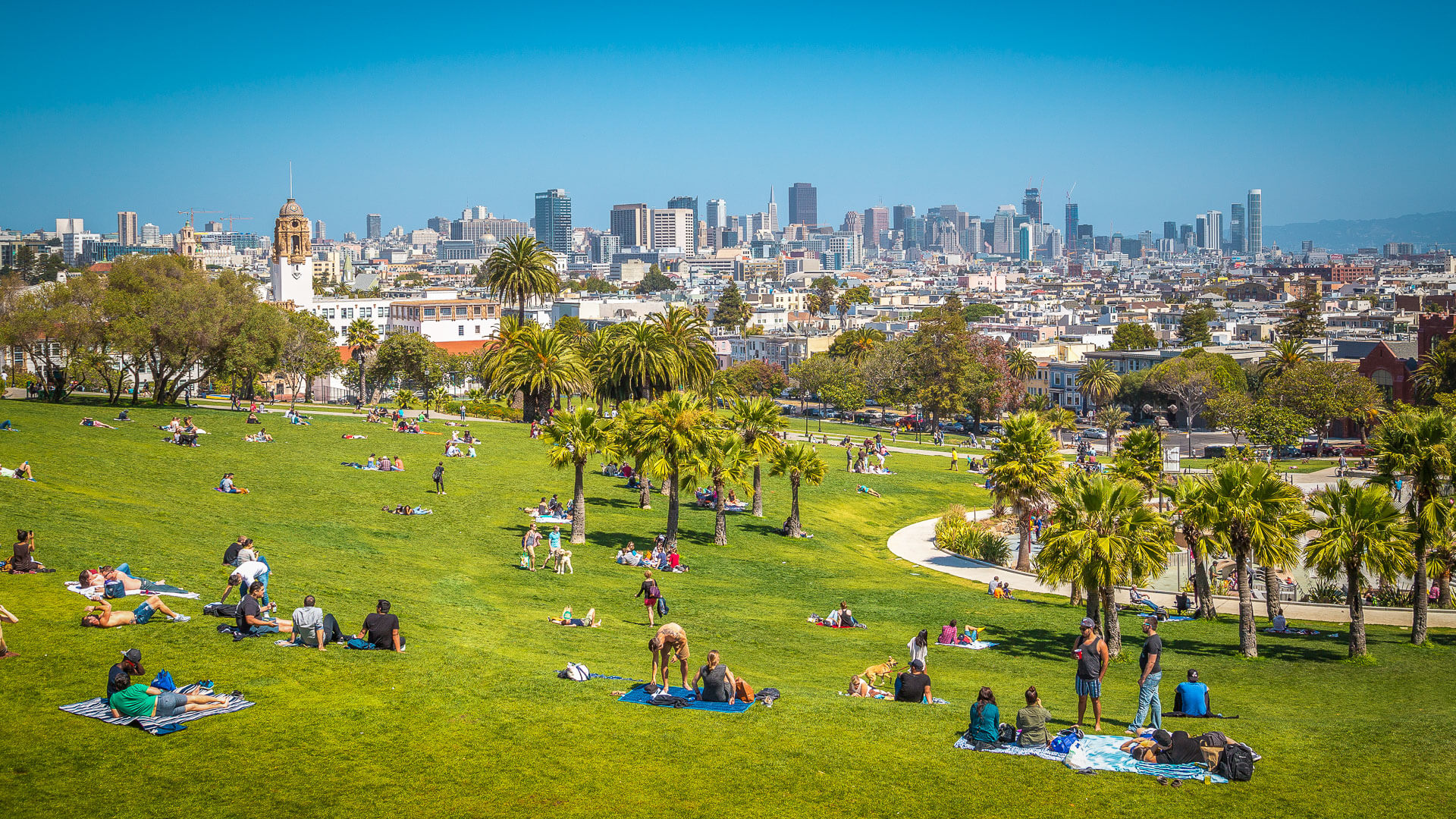 people hangout in Mission Dolores Park in San Francisco