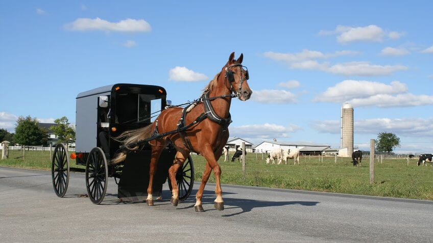 Amish Horse Drawn Carriage in Lancaster County, Pennsylvania