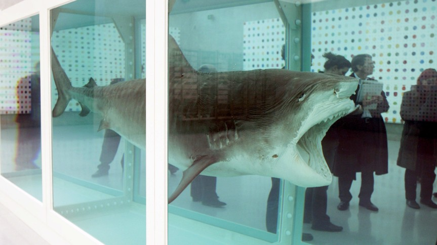 The Famous Work 'The Physical Impossibility of Death in the Mind of Someone Living' (1991/2006) of British Artist Damien Hirst