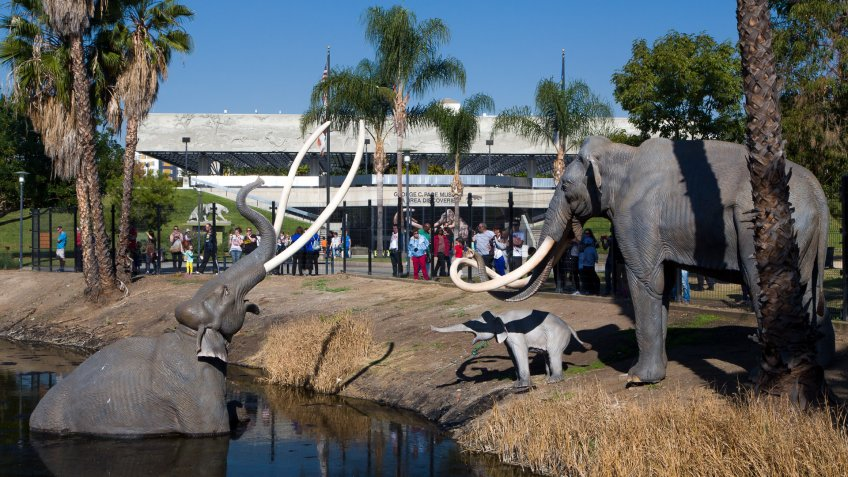 La Brea Tar Pits in Los Angeles California
