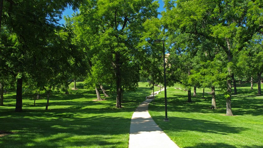 """""""Path in Marvin Grove on the campus of the University of Kansas, Lawrence, Kansas."""