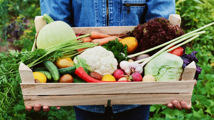 crate full of farm fresh produce