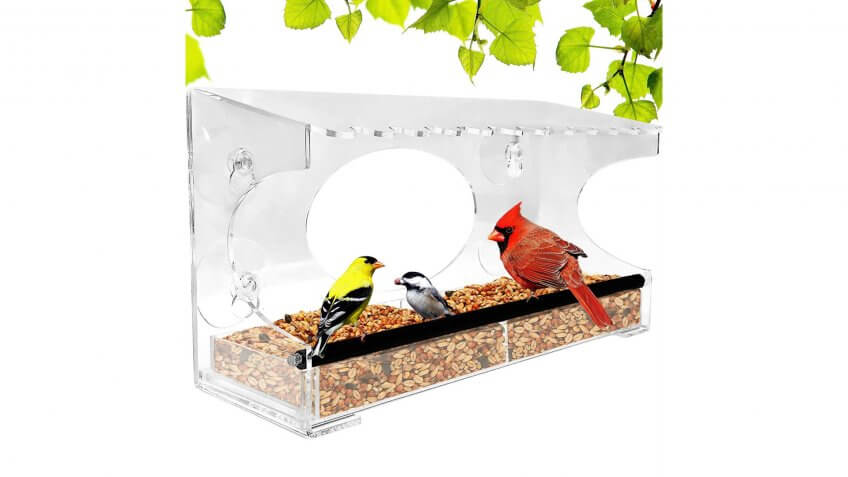 Nature Gear XL Window Bird Feeder
