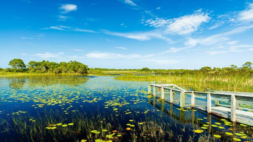 Port Saint Lucie Florida nature reserve