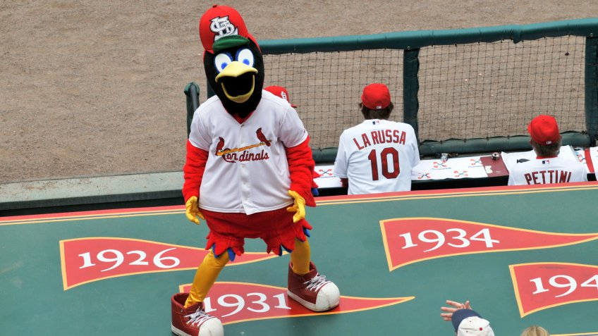 ST LOUIS - MAY 23: Fredbird, the official mascot of the Saint Louis Cardinals at Busch Stadium in St.