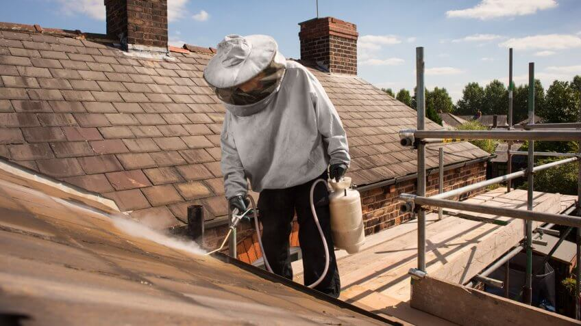 pest control takes care of wasps nest on roofline.