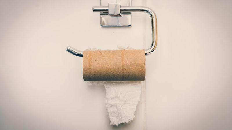 Empty toilet paper roll in public restroom.