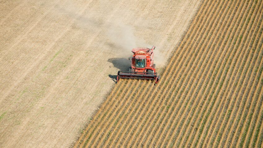 An aerial view of a red combine harvesting a fall soybean field.
