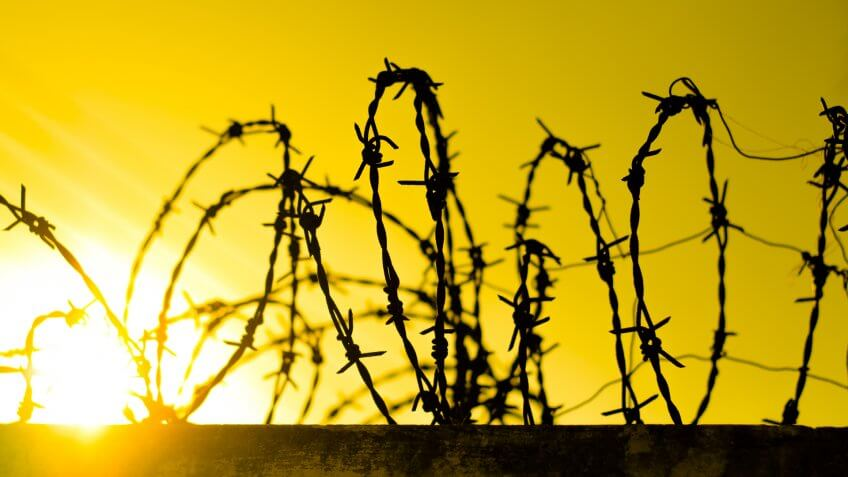 tangled steel barbed wire fence
