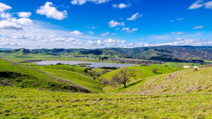 Panoramic view of the Lagoon Valley Park in Vacaville, California, USA, featuring the chaparral in the winter with green grass, and the lake.