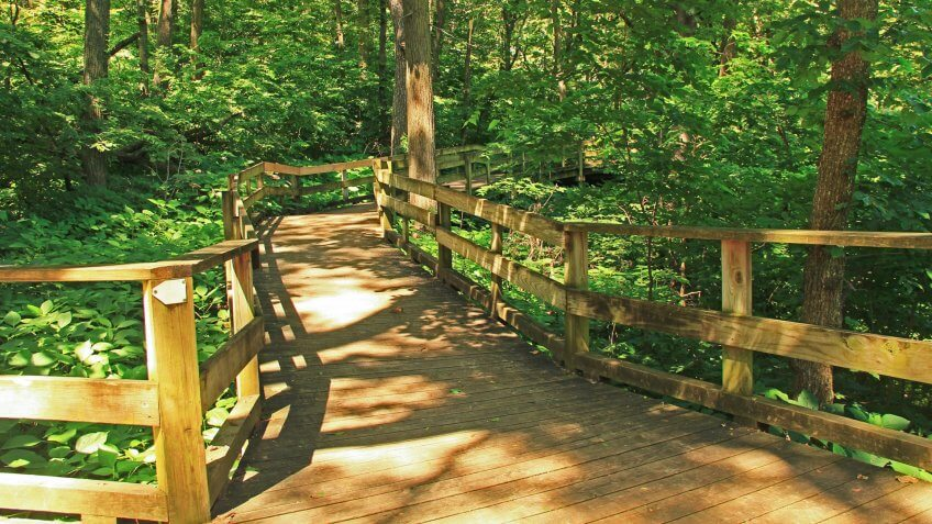 Peaceful boardwalk trail through lush trees in the Fontenelle Forest Nature Center in Bellevue, Nebraska near Omaha