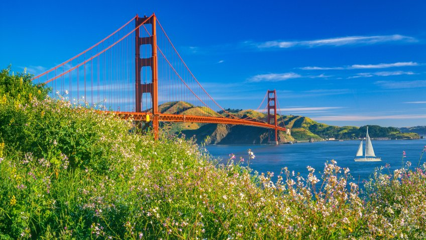 Golden Gate bridge with spring flowers and recreational boat, CA.