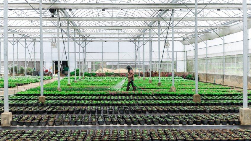 indoor hydropnic farm