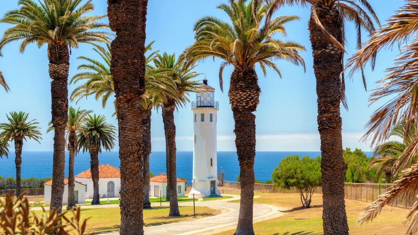 Palm trees around the Point Vicente Lighthouse in Ranchos Palos Verdes, California.