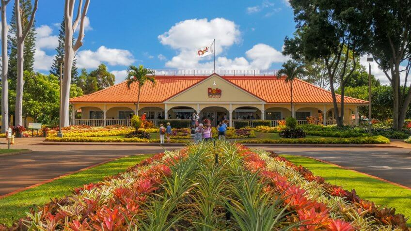 MILILANI, UNITED STATES OF AMERICA - JANUARY 12, 2015: a view of the dole pineapple plantation at mililani in hawaii - Image.